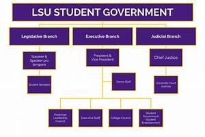 About Us Lsu Student Government