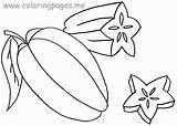 Coloring Fruit Clipart Library Clip sketch template