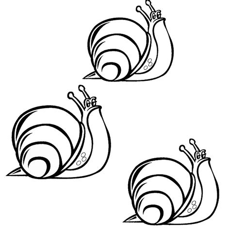 snail coloring pages    print