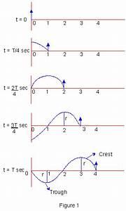 Pinkmonkey Com Physics Study Guide