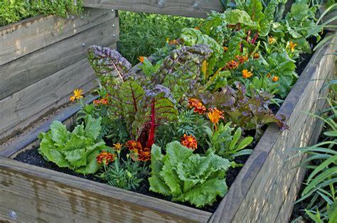 Bepflanzen Eines Hochbeetes by Hochbeet 187 Pflanzplan Fruchtfolge Und Mischkultur