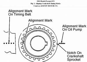 Timing Belt  I Need Timing Mark Diagrams For 2001 Honda