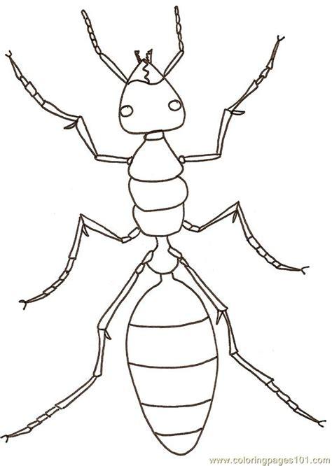 ants coloring page  ants coloring pages coloringpagescom