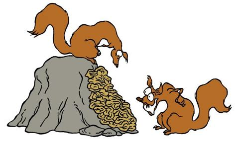c est quoi un lichen espace des sciences