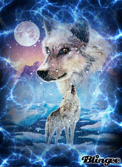 wolf im schnee picture  blingeecom