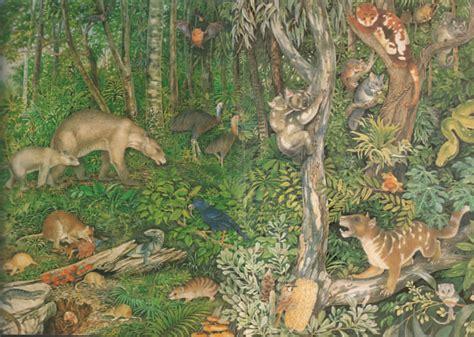 Rainforest Landscape with Animals