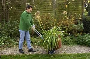 überwinterungszelte Für Pflanzen : k belpflanzen berwintern tipps der facebook user mein ~ Michelbontemps.com Haus und Dekorationen