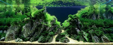 Amano Aquascape by Science Journal Takashi Amano Aquascaping Can Be