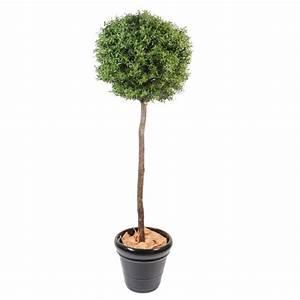 Plantes D Extérieur Pour Terrasse : eucalyptus plast tige artificiel de 110 cm de hauteur ~ Dailycaller-alerts.com Idées de Décoration