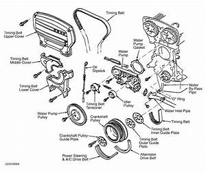 1993 Ford Escort Serpentine Belt Routing And Timing Belt Diagrams