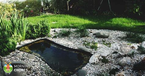 best ponds 6 best pond liner reviews quality liners for koi ponds and fountains