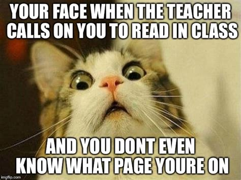 Scared Cat Meme - memes scared boxer memes breeds picture scared memes image memes at relatably