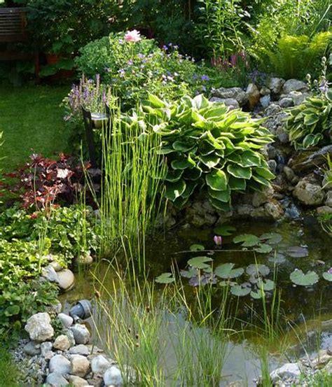 Naturteich Ohne Folie by Uferbepflanzung Bild 4 Living At Home