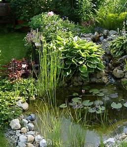 Pflanzen Für Teichumrandung : uferbepflanzung bild 4 living at home ~ Michelbontemps.com Haus und Dekorationen