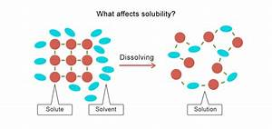 What Affects Solubility  Worksheet