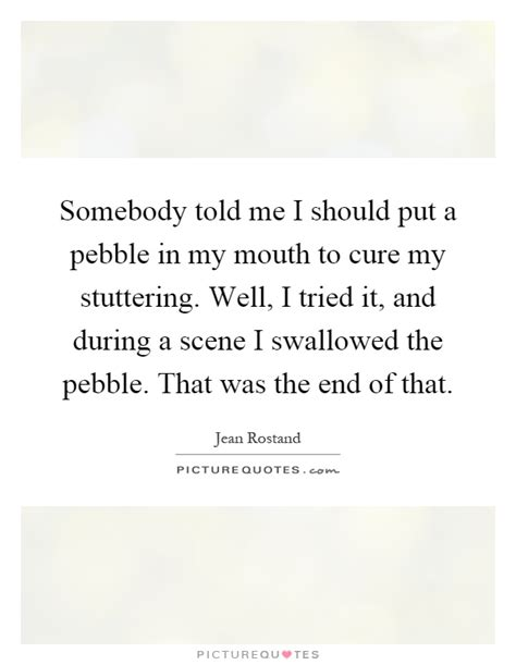 What Should I Put At The End Of A Resume by Somebody Told Me I Should Put A Pebble In My To Cure My Picture Quotes