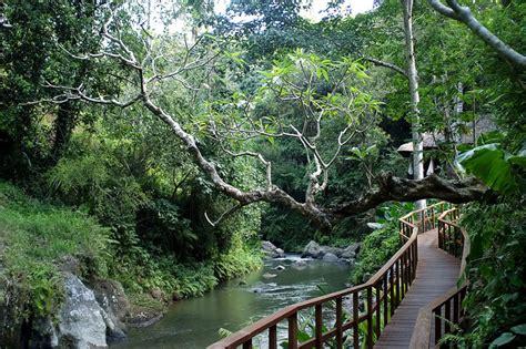 bali s tropical paradise ubud resort