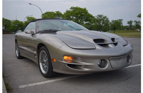 Slammed Trans Am by Trans Am Ws6 For Sale
