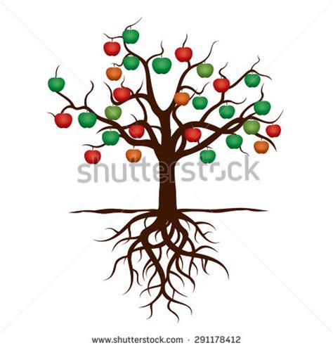 apple tree with roots drawing cycle apple tree stock vector 350343728