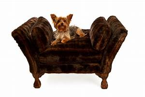 Bedroom marvelous unique luxury dog bed related items for Dog related home decor