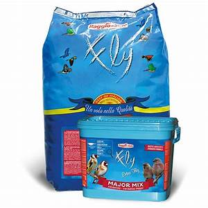 Graines De Tournesol Pour Oiseaux : raggio di sole major mix 12 kg m lange de graines pour ~ Dailycaller-alerts.com Idées de Décoration