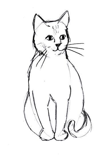 cat  drawing cute cats animal artists  admire