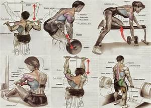 Build  Strengthen   U0026 Outline Your Back With The Back Attack Workout