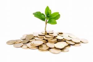 Greenhouse business plan pdf