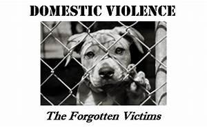 Case Animal Rights  U0026 Ethics Society