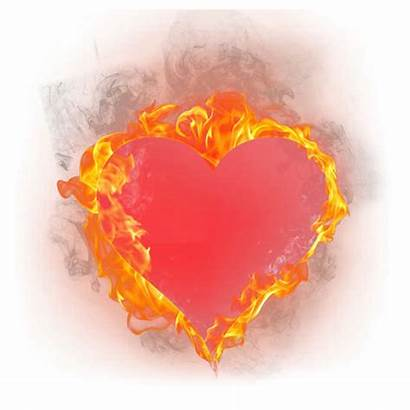 Heart Burning Fire Searchpng