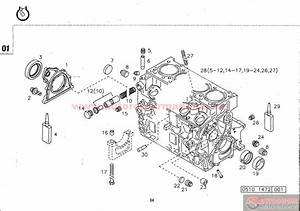 1989 Ford F 150 5 8 Engine Diagram  1989  Free Engine Image For User Manual Download