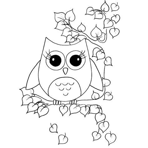 coruja  colorir  imagens png