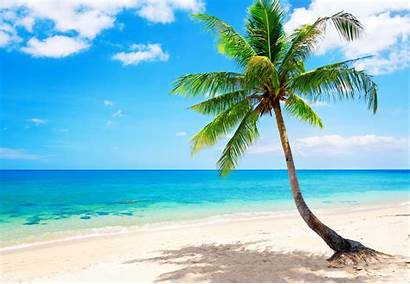 Tropical Beach Wallpapers Summer Sea Sand