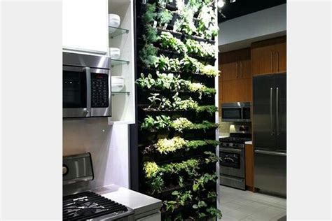 Vertical Herb Garden In Your Kitchen by Vertical Herb Garden In Your Kitchen For The Home