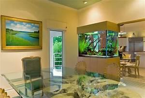 Aquarium-salon-magnifique