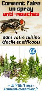 Comment Chasser Les Mouches : comment fabriquer un spray anti mouches dans votre cuisine ~ Melissatoandfro.com Idées de Décoration