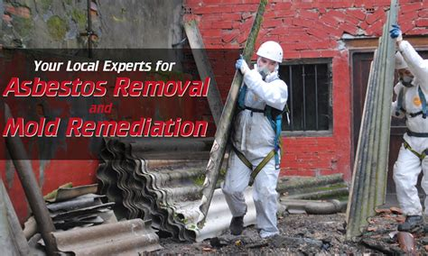 importance  asbestos training courses