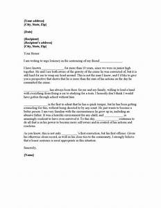 writing plea leniency letter judge character reference With letter to a judge template