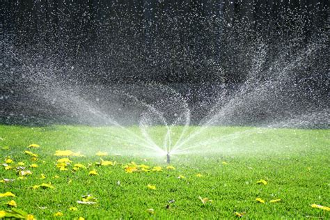 Total Lawn Care Inc.-full Lawn Maintenance, Lawn