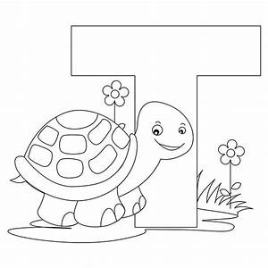 Turtle Coloring Pages For Preschoolers at GetColorings.com ...