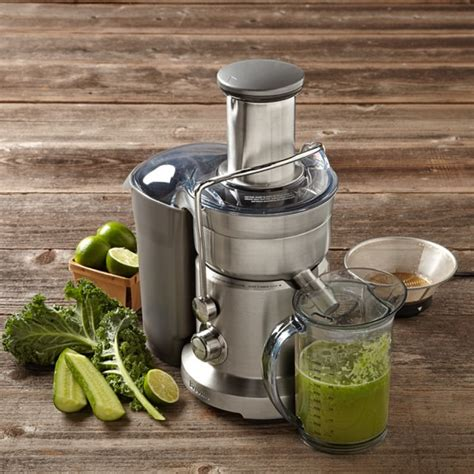 breville juicer juice fountain vegetable duo sonoma williams juicing omega juicers win