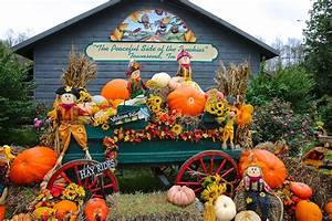 Sweet Southern Days: Fall Decorations in the Mountains  Fall