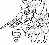 Bee Coloring Pages Honey Printable Bees Cute Template Drawing Drawings Print Cliparts Flowers Clip Templates Popular Comments sketch template