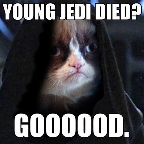 7 Best Clean Grumpy Cat Images On Pinterest Chistes
