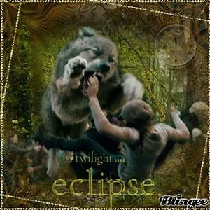 Eclipse Werewolves - Twilight Series Photo (22990897) - Fanpop