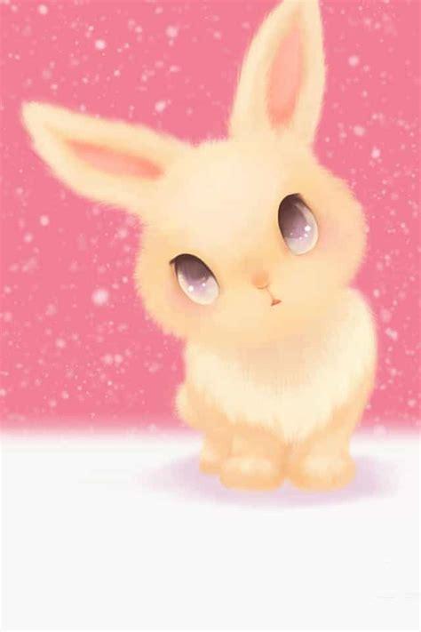 Anime Bunny Wallpaper - rabbit wallpapers wallpapersin4k net