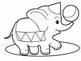 Coloring Pages Elephant Jungle Safari Dolphin sketch template