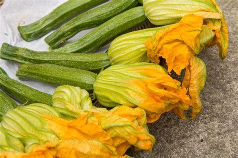 recettes de cuisine japonaise recette des beignets de fleurs de courgette