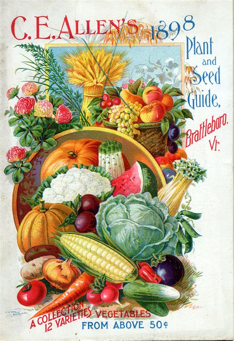 Plant Nursery Catalogs Free by Seed Catalogs From Smithsonian Institution Libraries