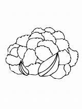 Cauliflower Coloring Colorare Conopida Colorat Desene Vegetables Cavolfiore Disegno Disegni Testa Blumenkohl Ausmalbilder Head Zum Malvorlagen Ausdrucken Despre Broccoli Gemuese sketch template